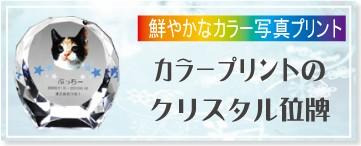 カラープリントのクリスタルペット位牌 円形 バナー