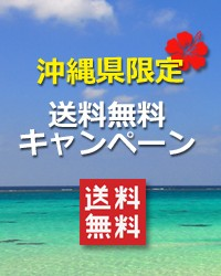 沖縄県限定 送料無料 退職プチギフト人気