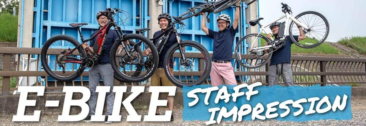 E-BIKE イーバイク スポーツ 電動自転車 2019