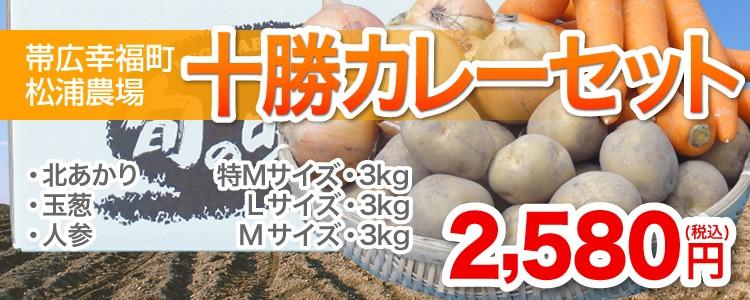 【帯広幸福町松浦農場】十勝カレーセット