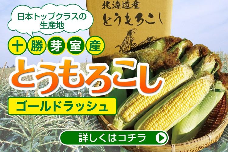 【十勝芽室産】とうもろこし(ゴールドラッシュ)