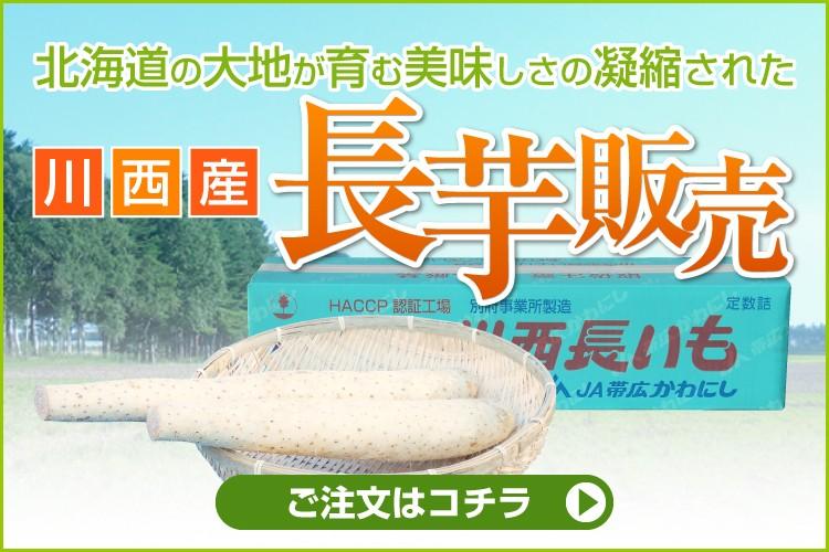 【十勝帯広川西産】長芋