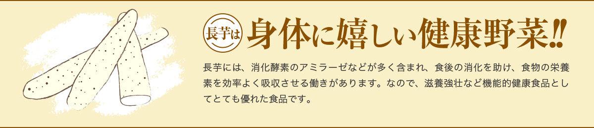 長芋は身体に嬉しい健康野菜!!