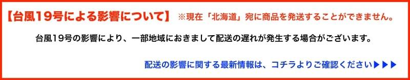 台風19号による影響について