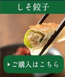 浜松餃子しそ餃子