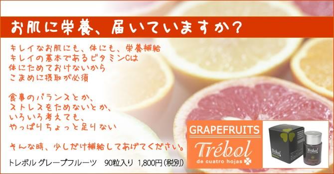 毎日のビタミンCにトレボルグレープフルーツ