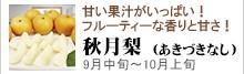 秋月梨(あきづきなし)
