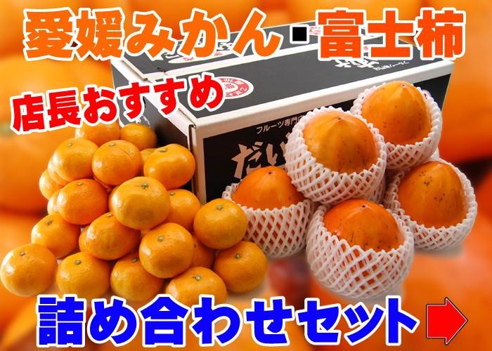愛媛みかん+富士柿 詰め合わせセット
