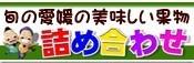詰め合わせ(富士柿+愛媛みかん