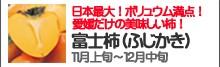 富士柿(ふじかき)
