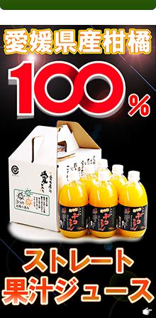 愛媛県産100%果汁ストレートジ