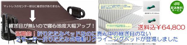 日本製産プレミアムバージョン電動ベッド