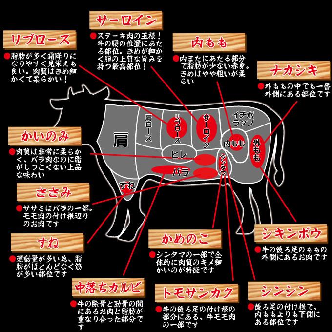 牛肉部位02
