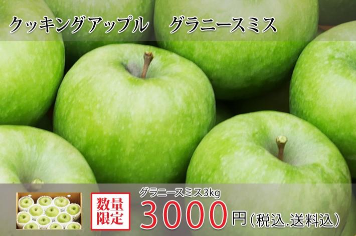 訳あり伊達水蜜園のりんご 2.5kgセット