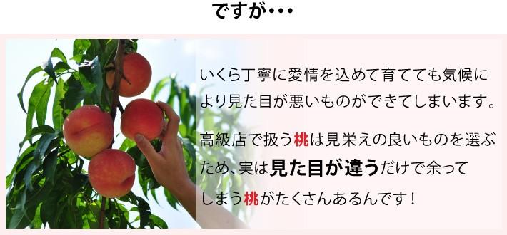 高級店で扱う桃は見栄えの良いものを選ぶため、実は見た目が違うだけで余ってしまう桃がたくさんあるんです!