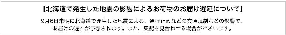 北海道地震による遅延