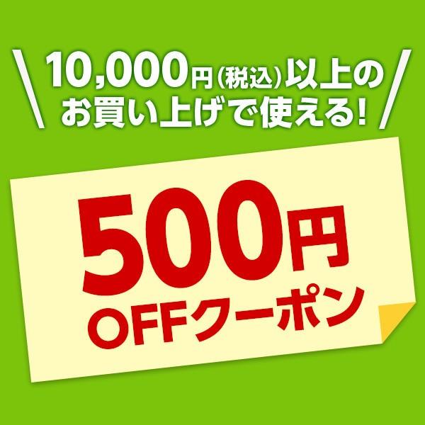 1/16(火)11:00から1/26(金)11:00まで!全品対象!10,000円以上お買い上げで使える500円OFFクーポン