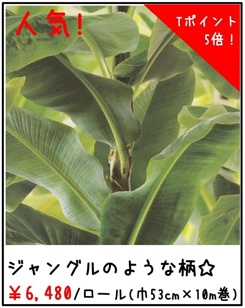 rasch バナナリーフ ジャングル 473407