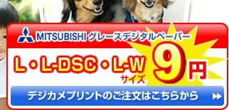 Lサイズ9円!はがきサイズ10円! ご注文はこちらから