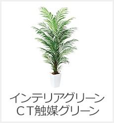 インテリアグリーン・CT触媒グリーン