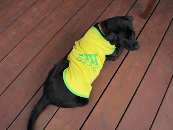 【犬の服2点購入でメール便送料無料】adidog★タンクトップ / 犬の服 ドッグウェア 犬服 わんちゃん用