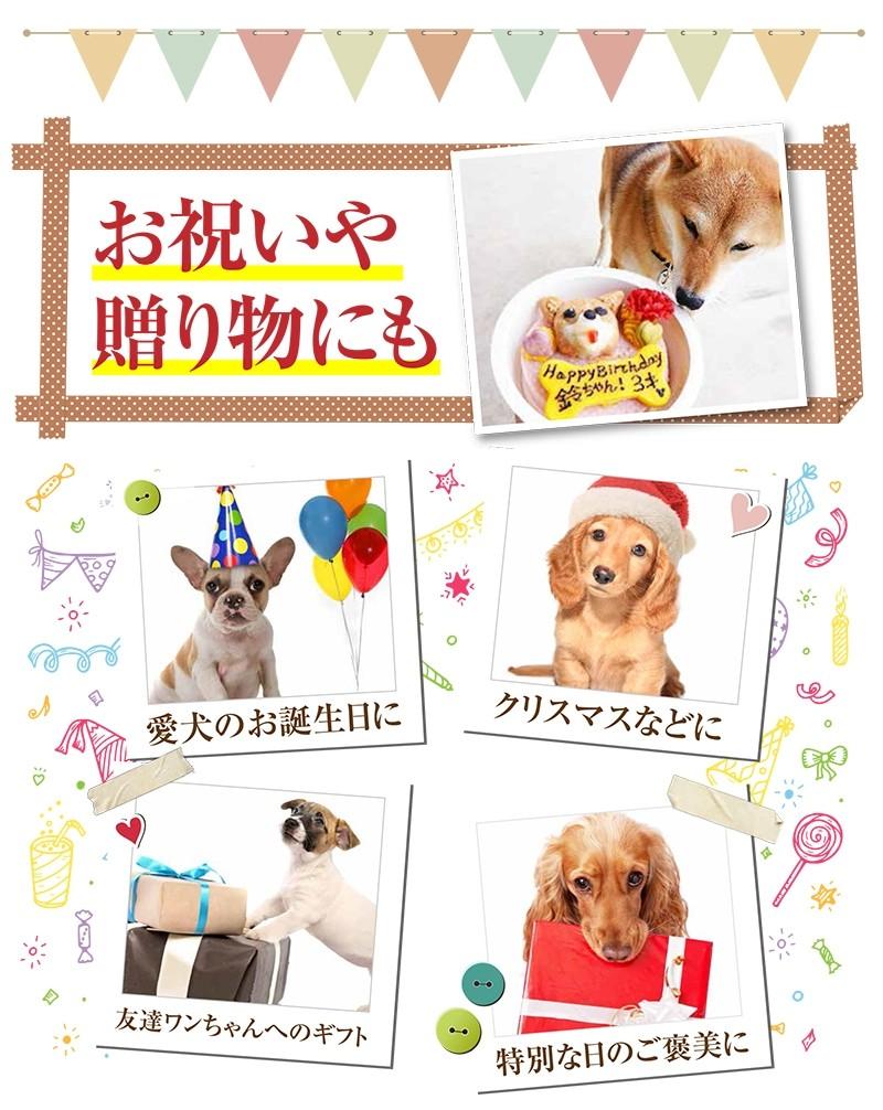 犬用ケーキ 誕生日ケーキ