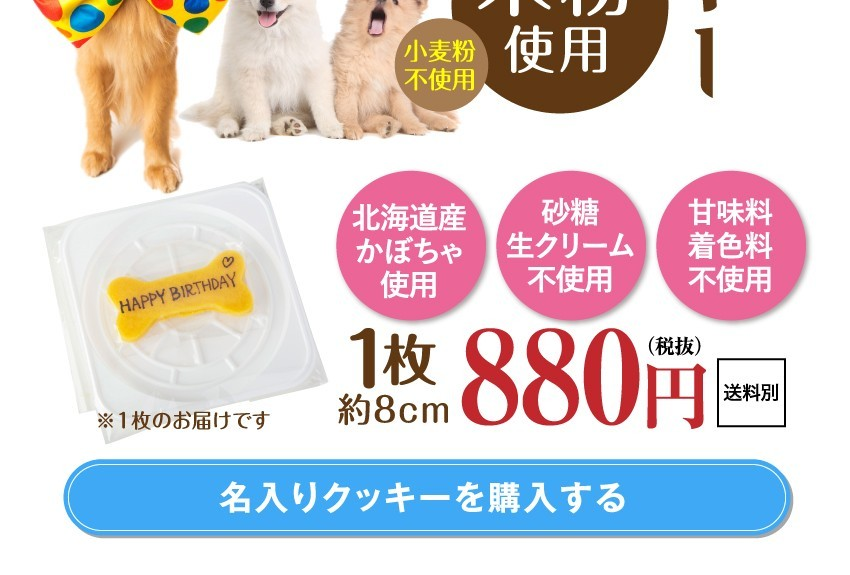 犬用 ケーキ 犬 誕生日ケーキ 無添加