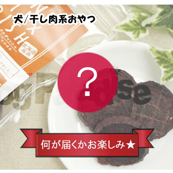 商品到着後レビューを書いて1円で商品をGET! dogparadise 10