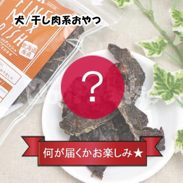 商品到着後レビューを書いて1円で商品をGET! dogparadise 15