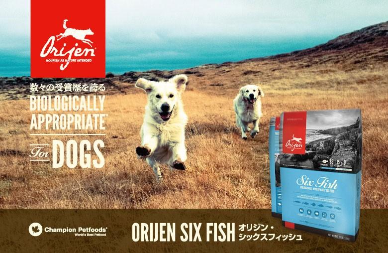 ORIJEN Six Fish オリジン シックスフィッシュ