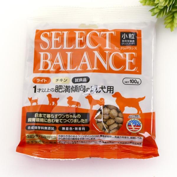 商品到着後レビューを書いて1円で商品をGET! dogparadise 08