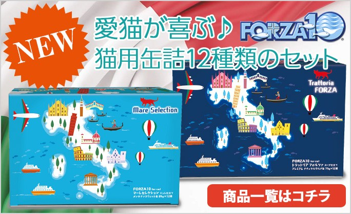 FORZA10キャット缶セット新発売