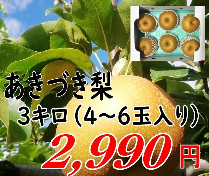 あきづき 梨