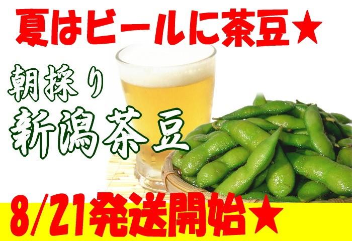 新潟 茶豆