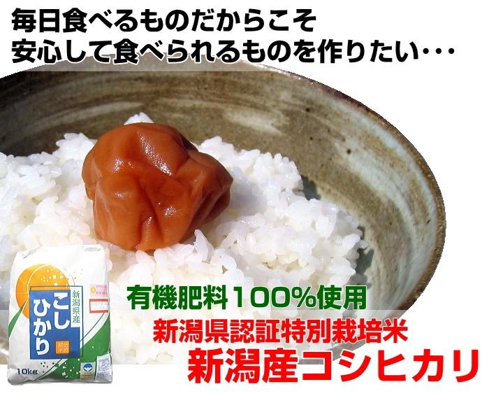 2018年度産 新米 新潟産 特別栽培米 有機肥料100% コシヒカリ