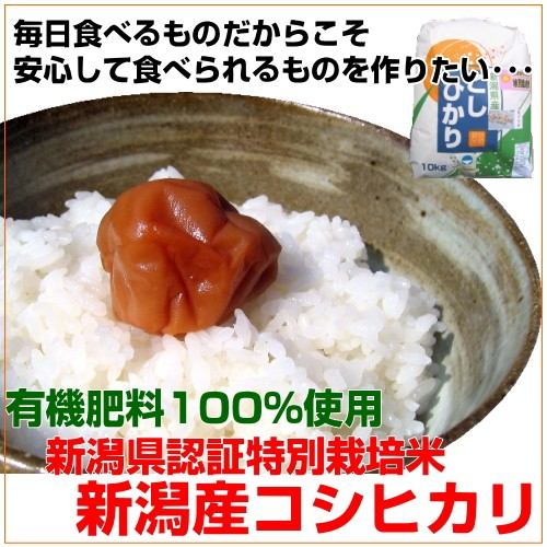 有機肥料100% 新潟県認証特別栽培 コシヒカリ