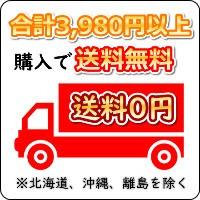 合計3,980円以上購入で送料無料 ※北海道、沖縄、離島を除く