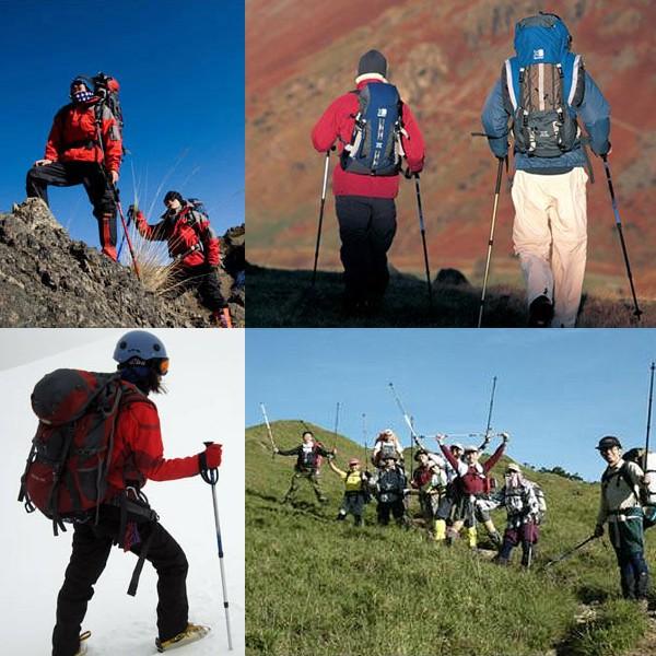 登山 ステッキ トレッキングポール