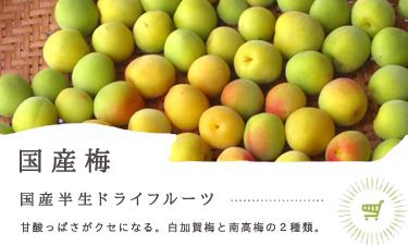 梅 国産半生ドライフルーツ  甘すっぱうめと南高梅、甘酸っぱいドライフルーツ