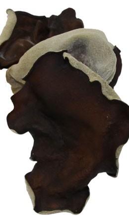 国産木耳の効能