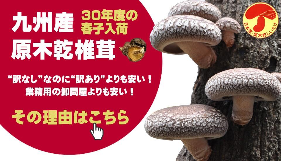 激安国産干し椎茸
