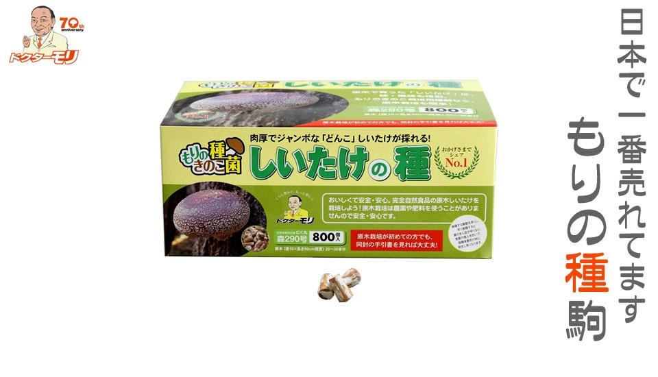 日本一売れてる種駒