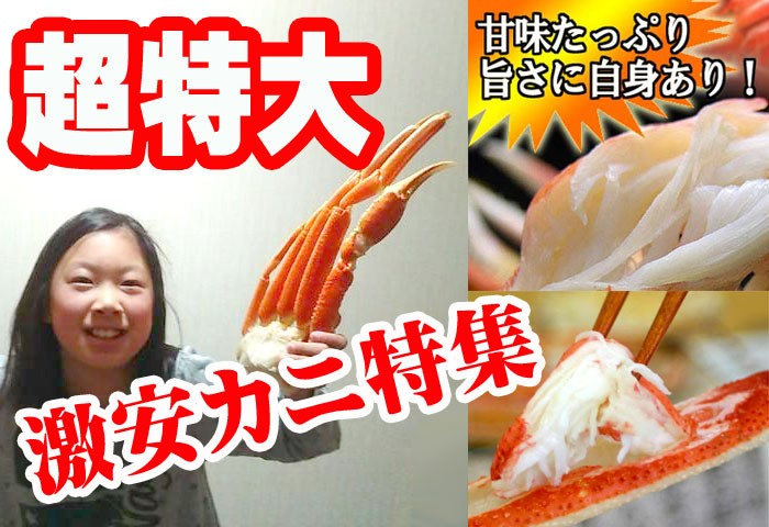ズワイガニ カニ カニ鍋 販売 かに 蟹 かに鍋 北海道 訳あり わけあり 激安 ずわいがに