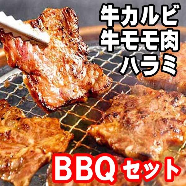 お試し 食べ比べ 肉 焼き肉 バーベキュー 訳あり わけあり 牛肉 安価 激安 通販 販売 不揃い 切り落とし