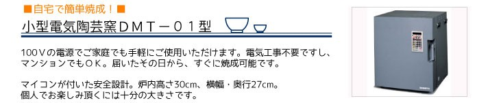 DMT-01