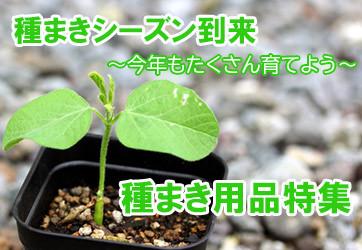 種まき用品
