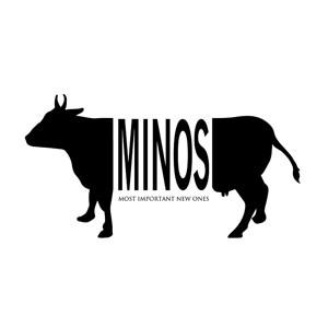 MINOS