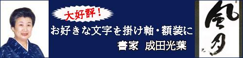 成田光葉先生