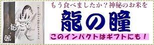 鉄腕ダッシュ 岐阜県産「龍の瞳」