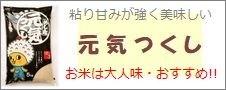 福岡県産「元気つくし」